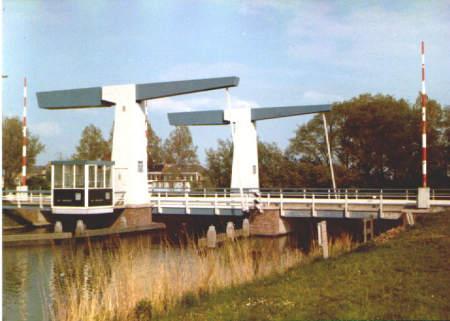 NR590