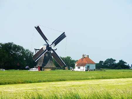 De molen vanaf de Eemswoudsterlaan