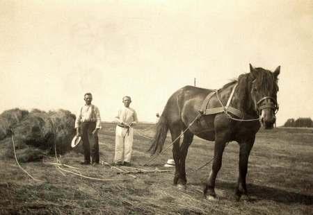 Tjalling de Boer web